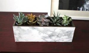 Stone & Marble Flower Pots